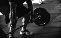 Proteiny a cvičení